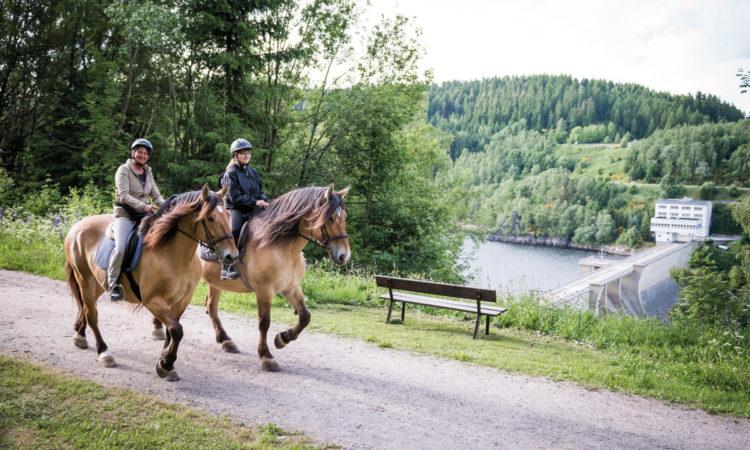 2 Pferde mit Reitern